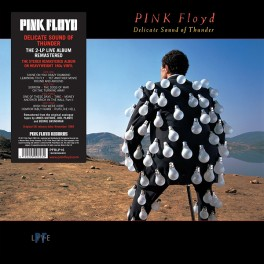 Pink Floyd Delicate Sound Of Thunder 2LP Vinil 180g Gatefold Remastered Warner Bernie Grundman 2017 EU