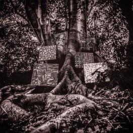 Kamasi Washington Harmony of Difference EP Vinyl Young Turks Optimal Media Germany 2017 EU