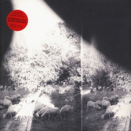 Godspeed You! Black Emperor Asunder, Sweet And Other Distress LP 180g Vinyl +Download +Poster 2015